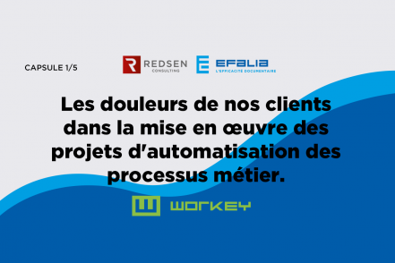 BPM solutions, a bridge between the Business side and IT – REDSEN & EFALIA
